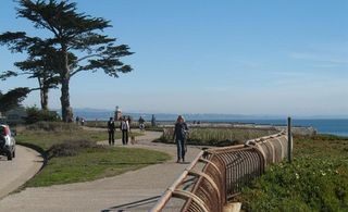 4316165-Walk_or_ride_along_West_Cliff_Drive_Santa_Cruz